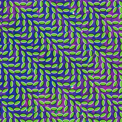 Animal Collective - Merryweather Post Pavilion